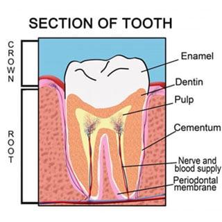 Tooth enamel